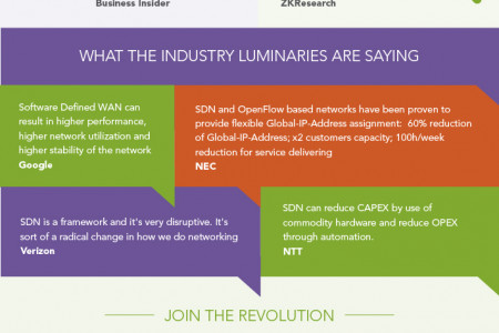 Software Defined Networking Revolution Infographic
