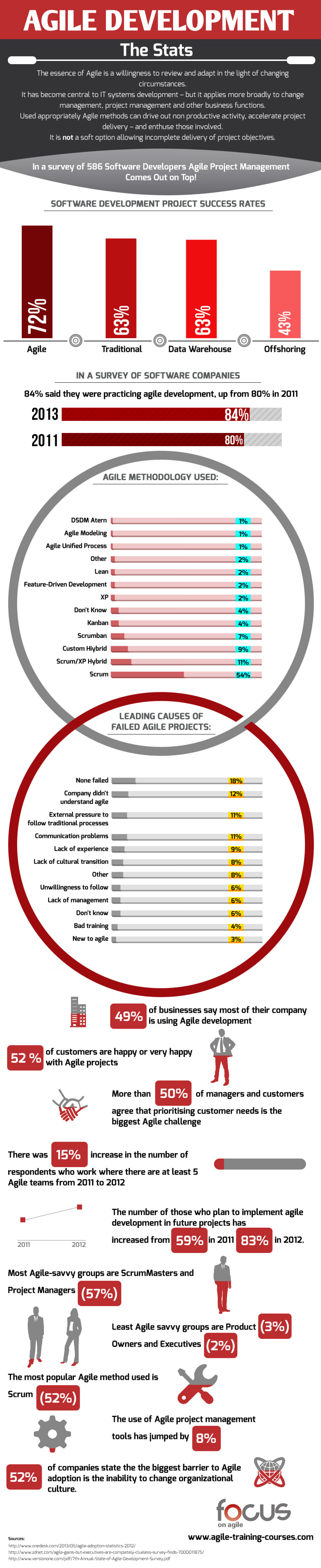 Software Development Project Success Rate Infographic