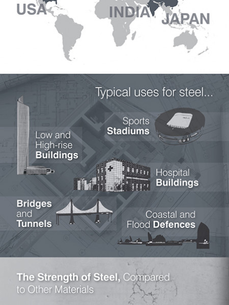 Solid Facts About Steel Infographic