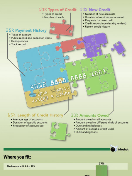 Solving the Credit Card Puzzle Infographic
