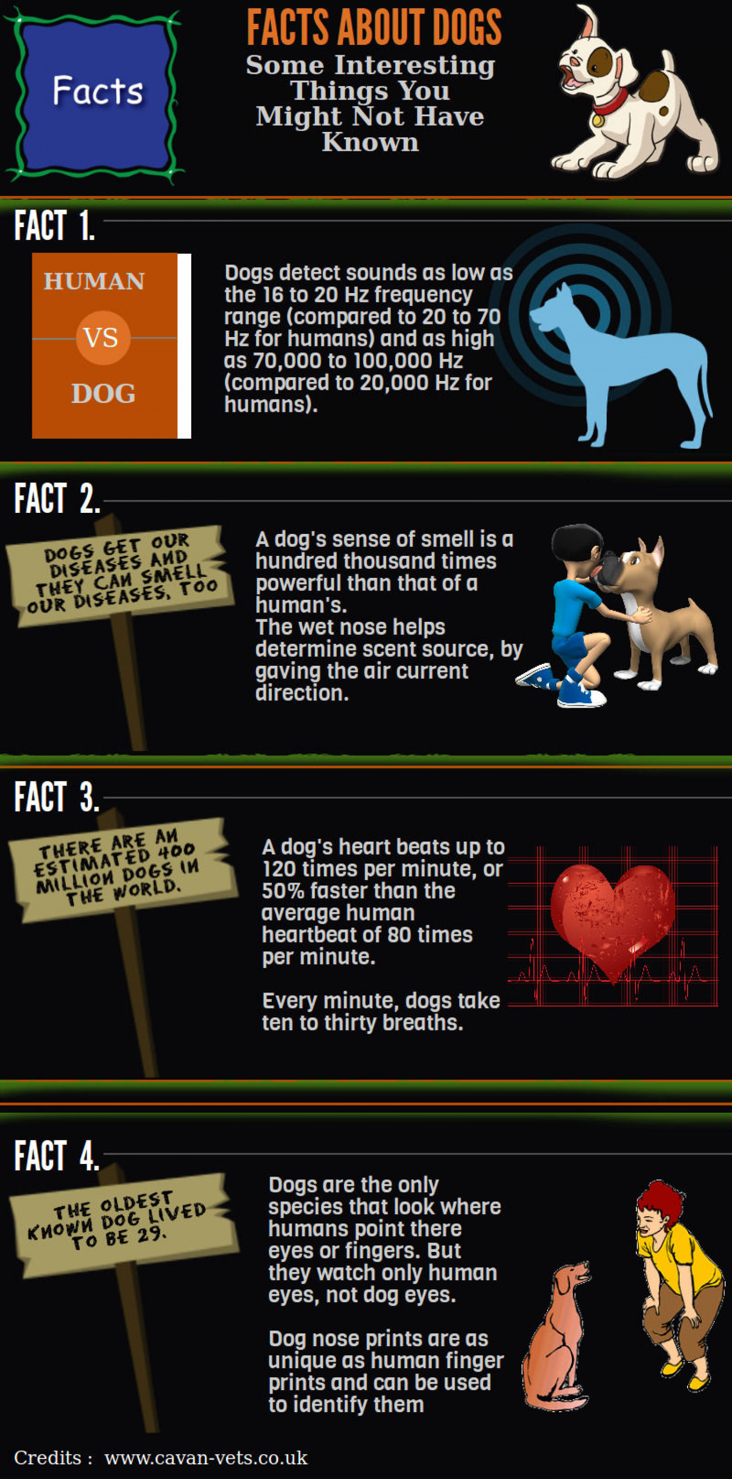 Some Interesting Dog Facts Infographic