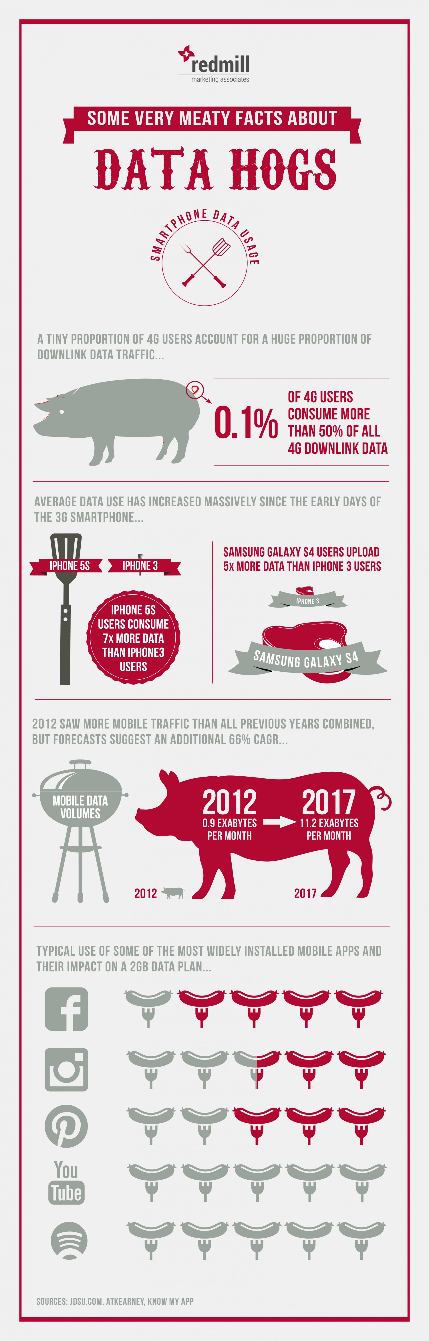Some Very Meaty Facts About Data Hogs Infographic
