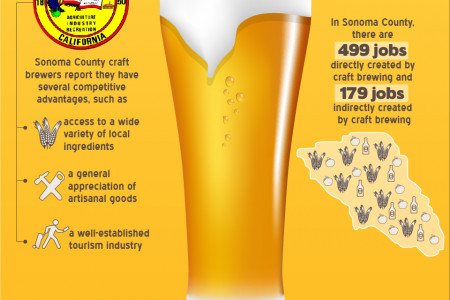 Sonoma County Gets Crafty With Beer Infographic