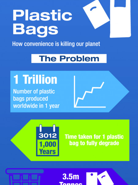 Sources of Plastic Infographic