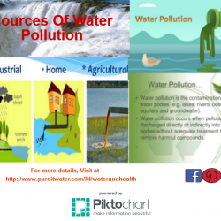 pollution solution script The problem of environment pollution has become a major threat for the human beings as well as the animals the impact of environmental pollution is serious it gives rise to ecological imbalance and brings about natural disasters.