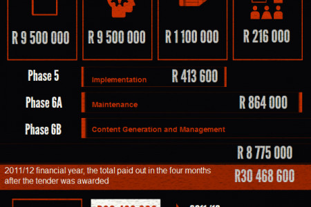 South Africa's Most Expensive Website Infographic