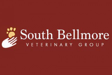 South Bellmore Veterinary Group Review: How to calm down an anxious dog Infographic