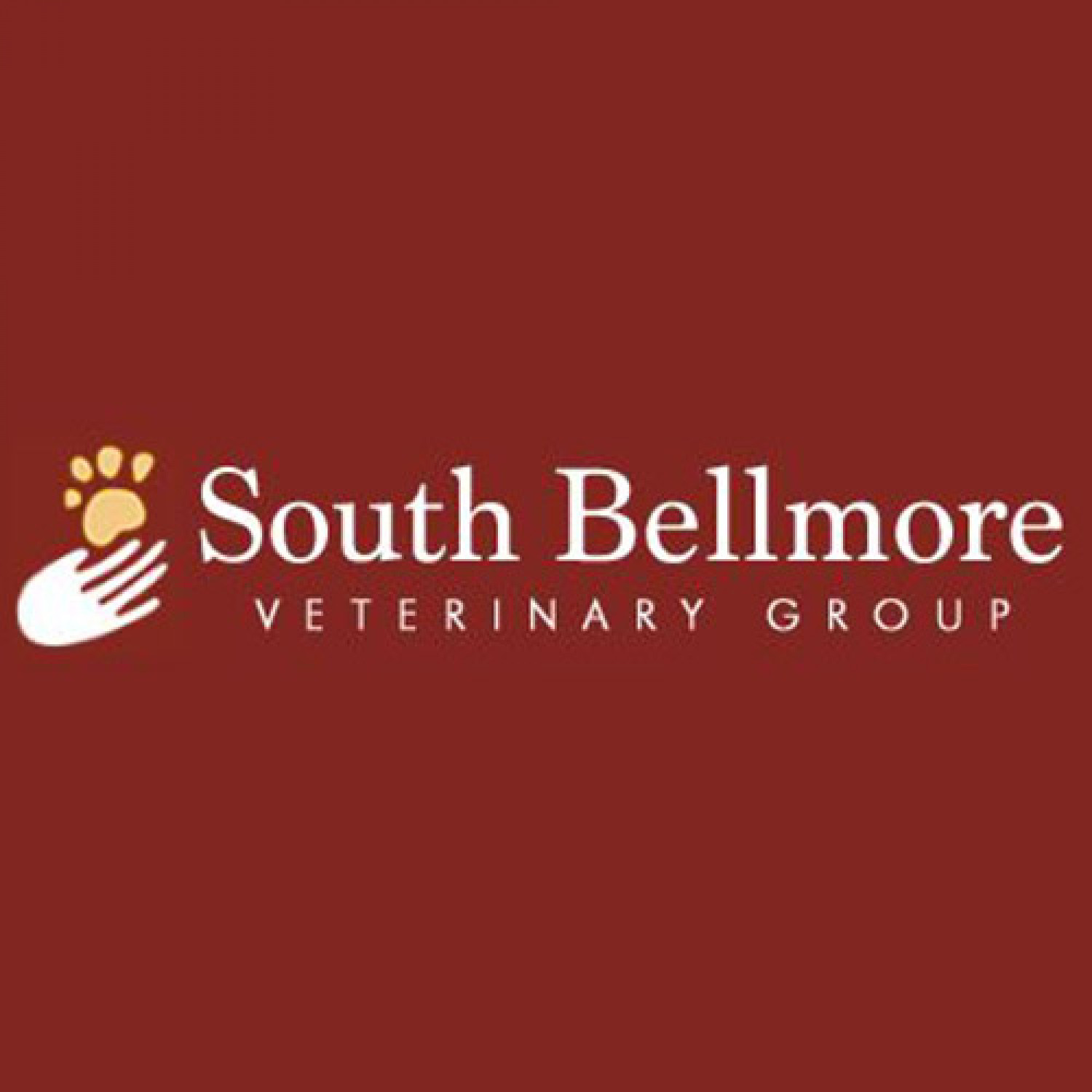 South Bellmore Veterinary Group Review: Take care of your senior pets with these tips Infographic