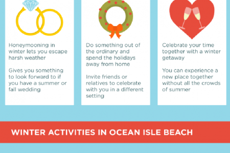 Spending Your Winter in Ocean Isle Beach Infographic