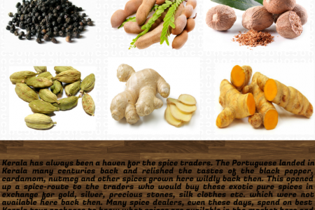 Spices in Kerala Infographic