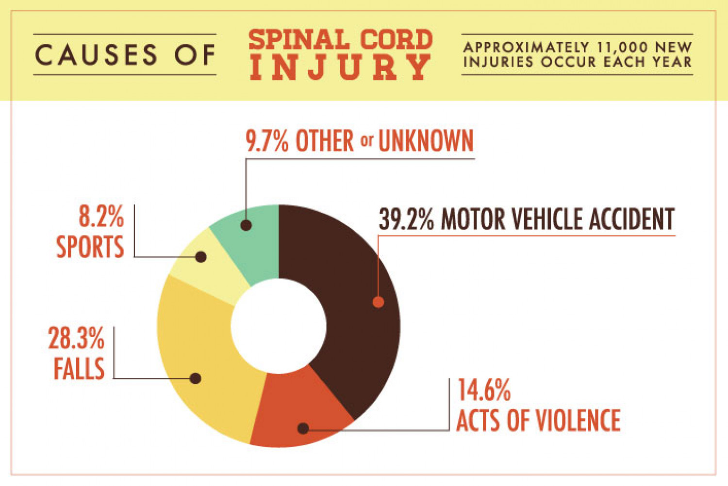 causes of spinal cord injury infographic