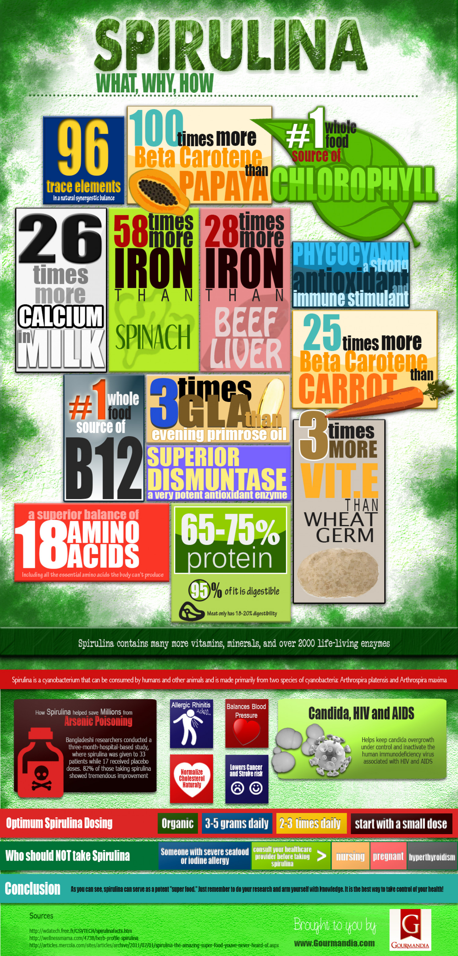 Spirulina -  the Healthiest Superfood Infographic