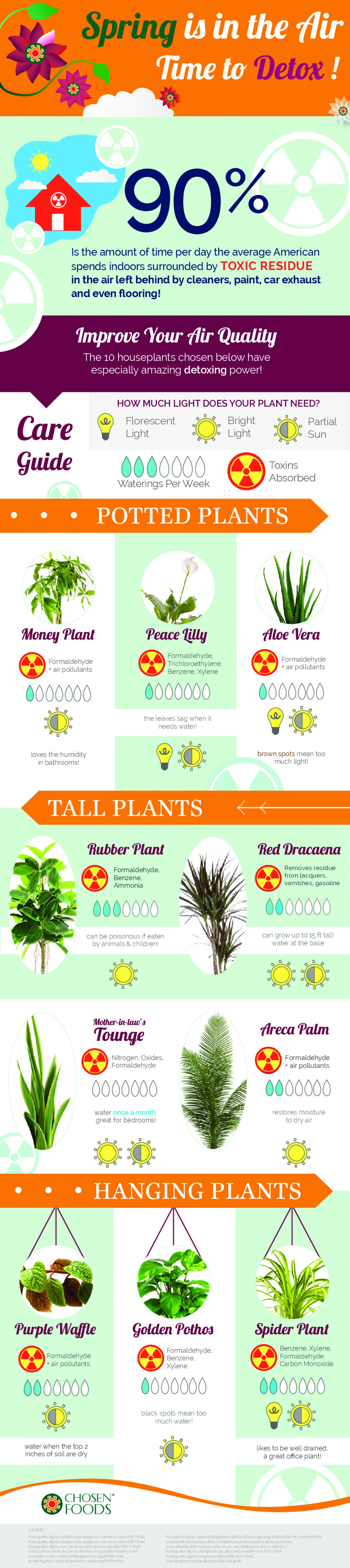 Spring is In The Air, Time To Detox! Infographic