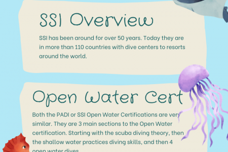 SSI or PADI, Whats The Difference? Infographic