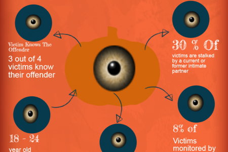 Stalking Virginia Defense Lawyer Reporting Stats Infographic