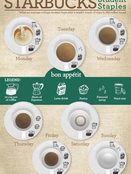 Starbucks Student Staples  Infographic