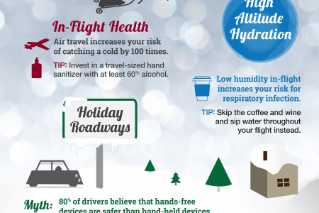 Stay Healthy During Holiday Travel Infographic