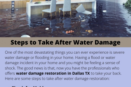 Steps to Take After Water Damage Infographic
