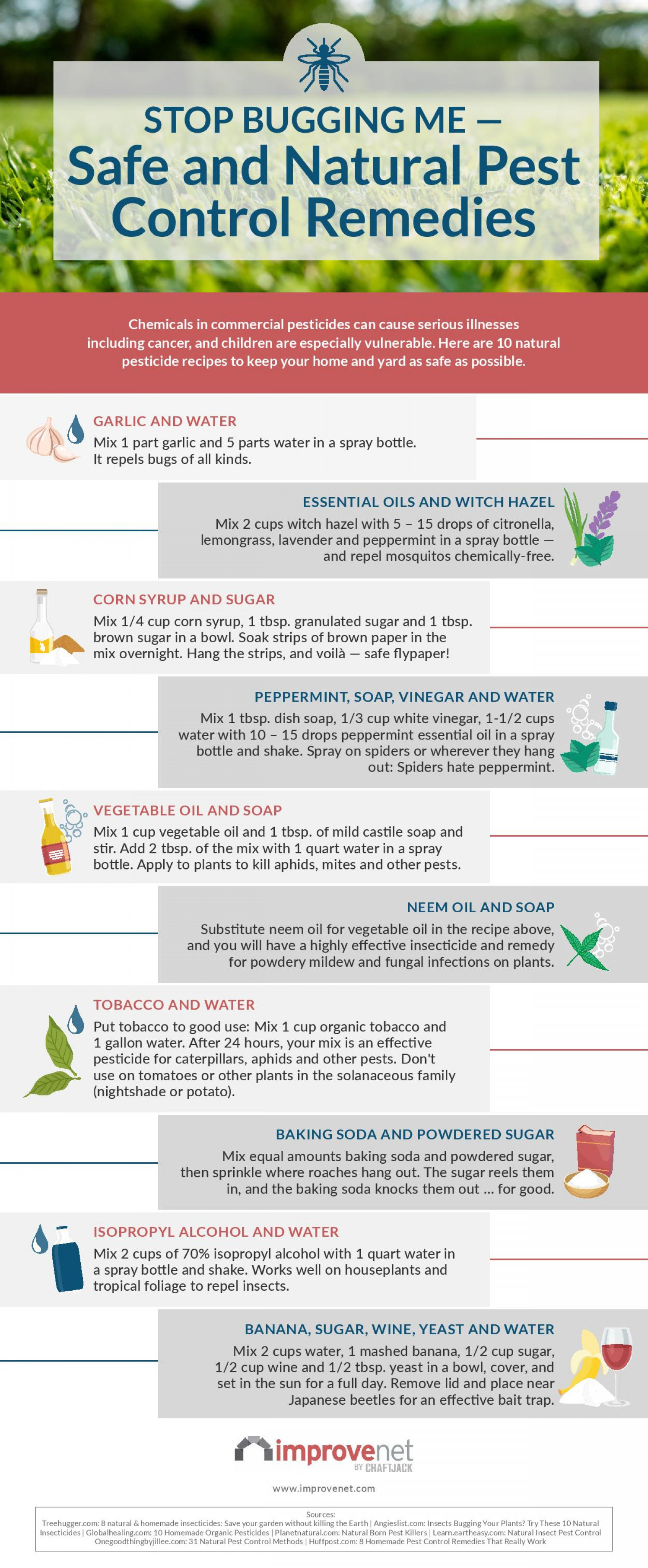 Stop Bugging Me- Safe and Natural Pest Control Remedies Infographic