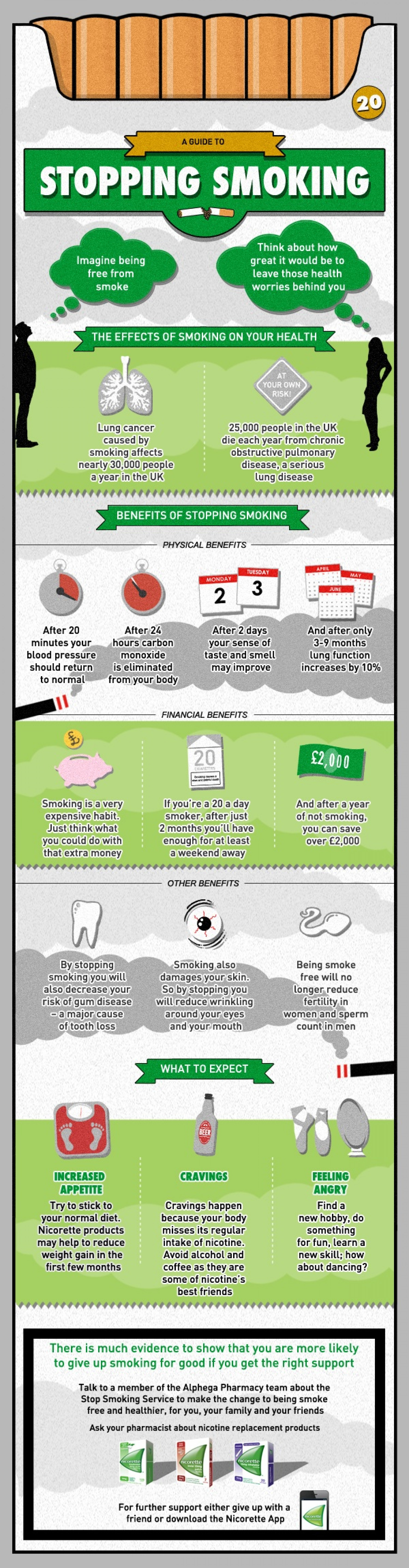 A Guide to Stopping Smoking Infographic