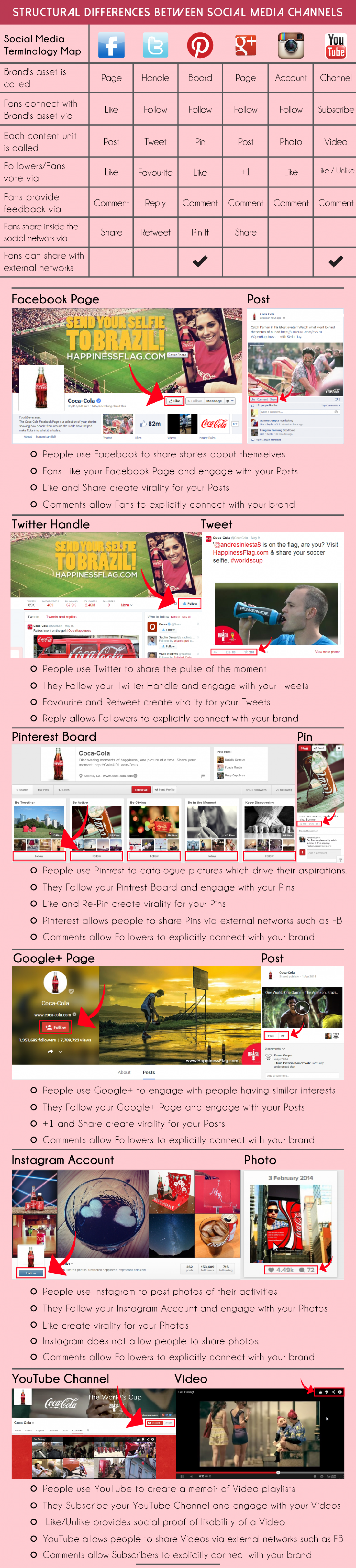 Structured Difference Between Social Media Channels Infographic