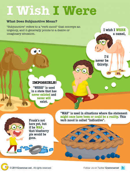 Subjunctive: I Wish I Were Infographic
