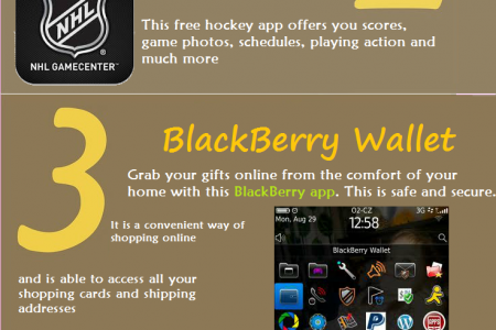 Summer vacations and BlackBerry apps - a deadly combo Infographic