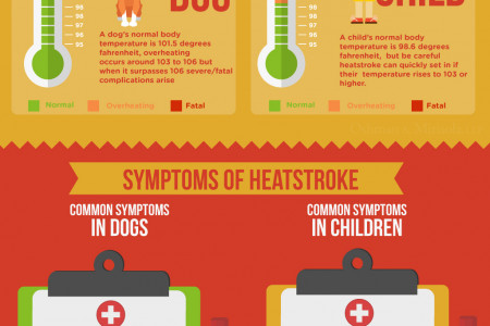 Summertime Car Heat Dangers in New York Infographic