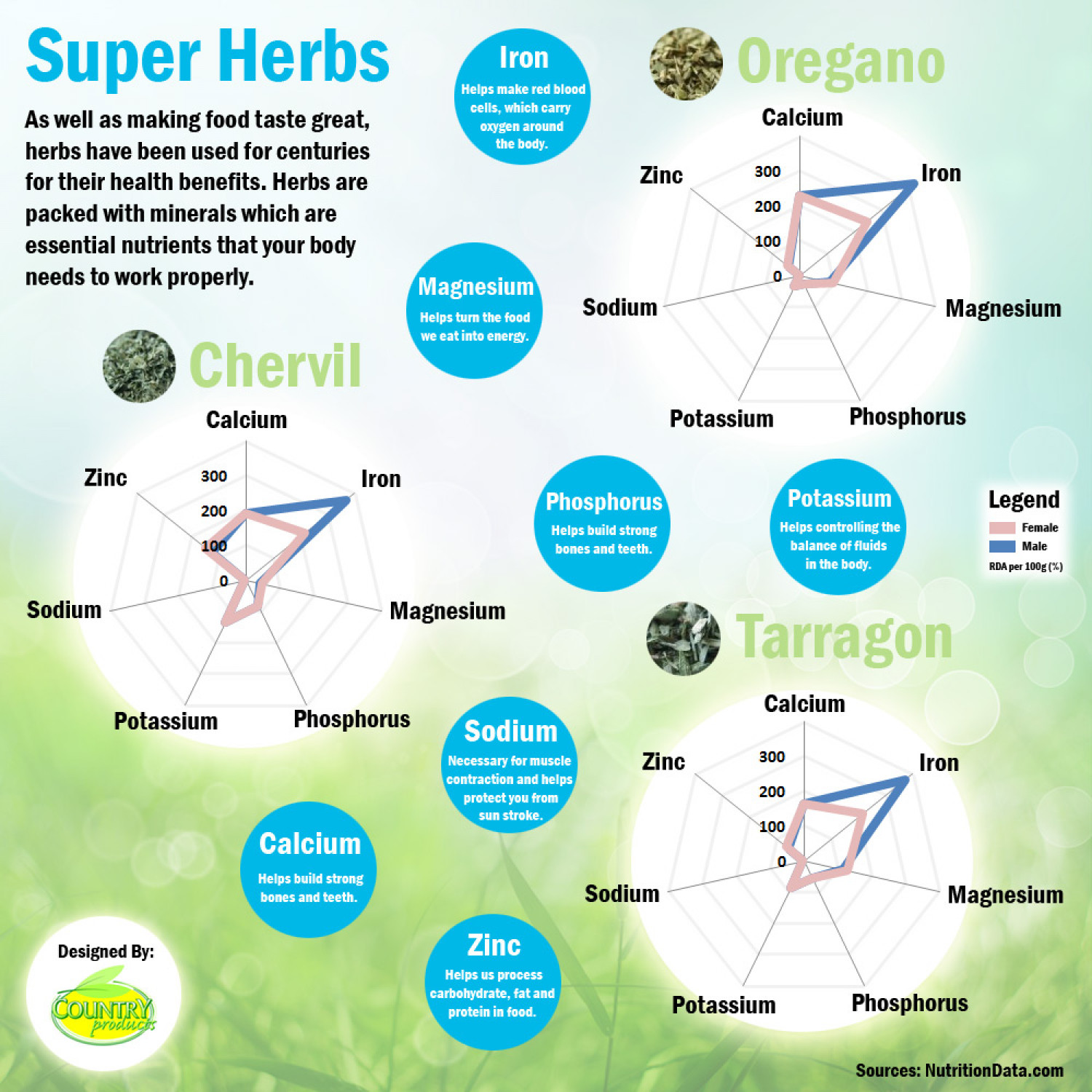 Super Herbs Infographic