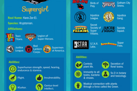Superheroines vs Supervillainesses: The Women of the DC Universe  Infographic