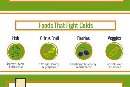 Supplement Your Health For A Cold-Free Summer Infographic
