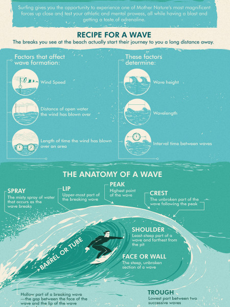 Surf's Up! The Anatomy of a Wave Infographic