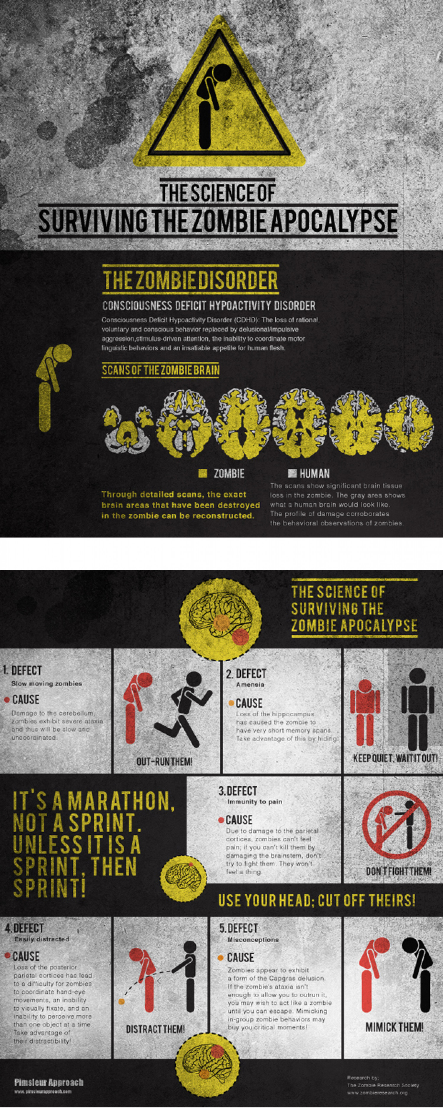 The Science of Surviving the Zombie Apocalypse Infographic