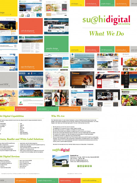 Sushi Digital Web Design Brochure Infographic
