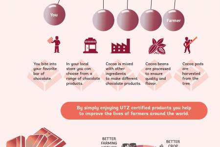 Sustainable Cocoa. Your Feel Good Moment.. Infographic