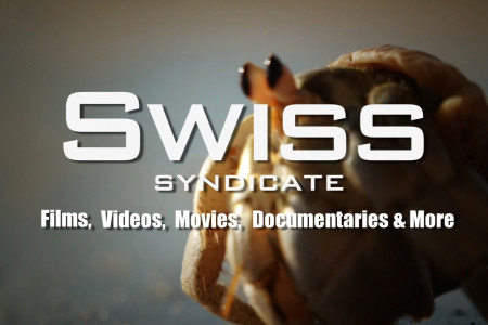 Swiss Syndicate Showreel Infographic