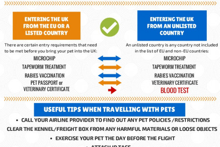 Taking Your Pet Abroad Infographic