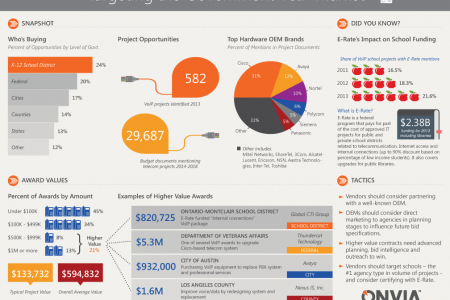 Targeting the Government VoIP Market Infographic