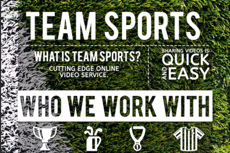 Team Sports Infographic Infographic