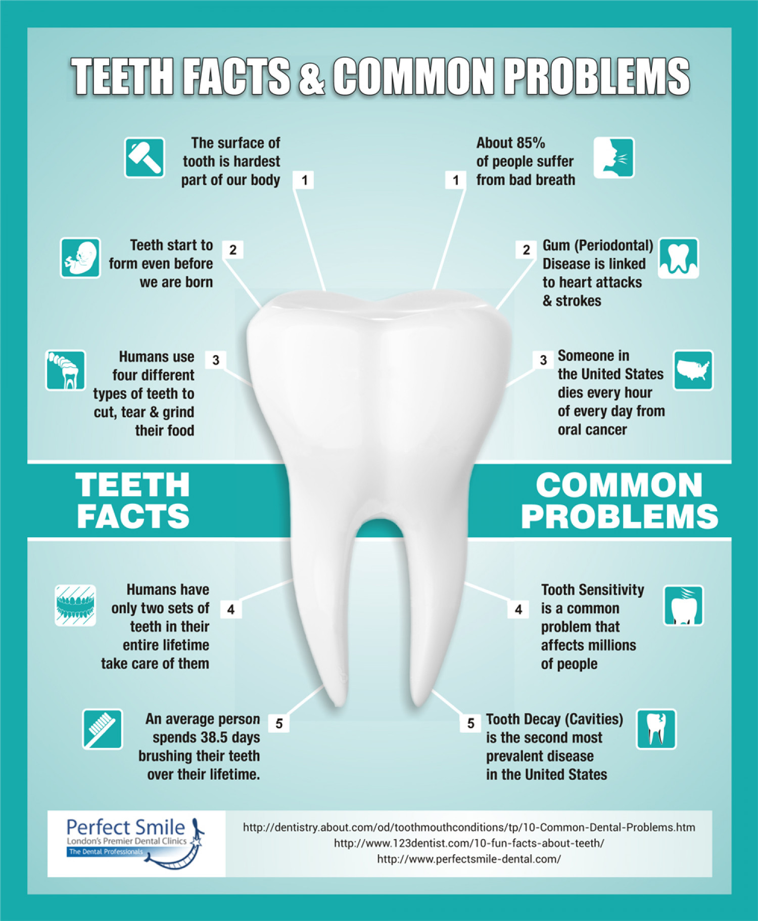 Teeth Facts & Common Problems | Visual.ly