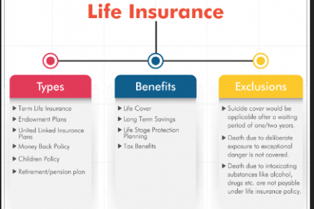Term Life Insurance  Infographic