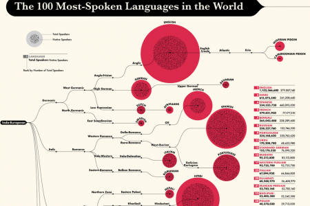 The 100 Most-Spoken Languages in the World Infographic