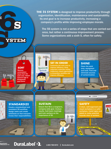 The 6S System Infographic