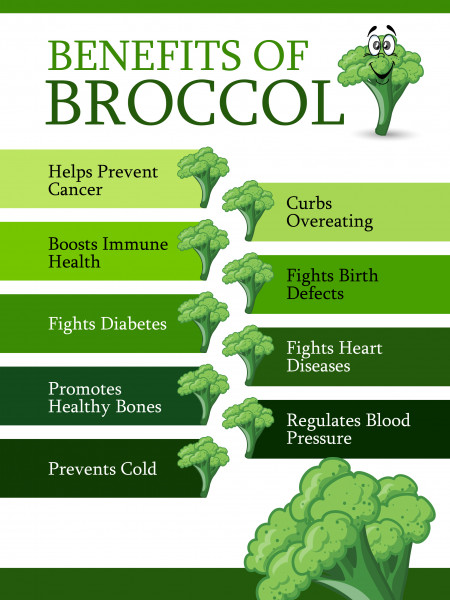 Benefits of Broccoli  Infographic