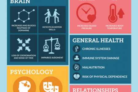 The Adverse Effects of Meth Infographic