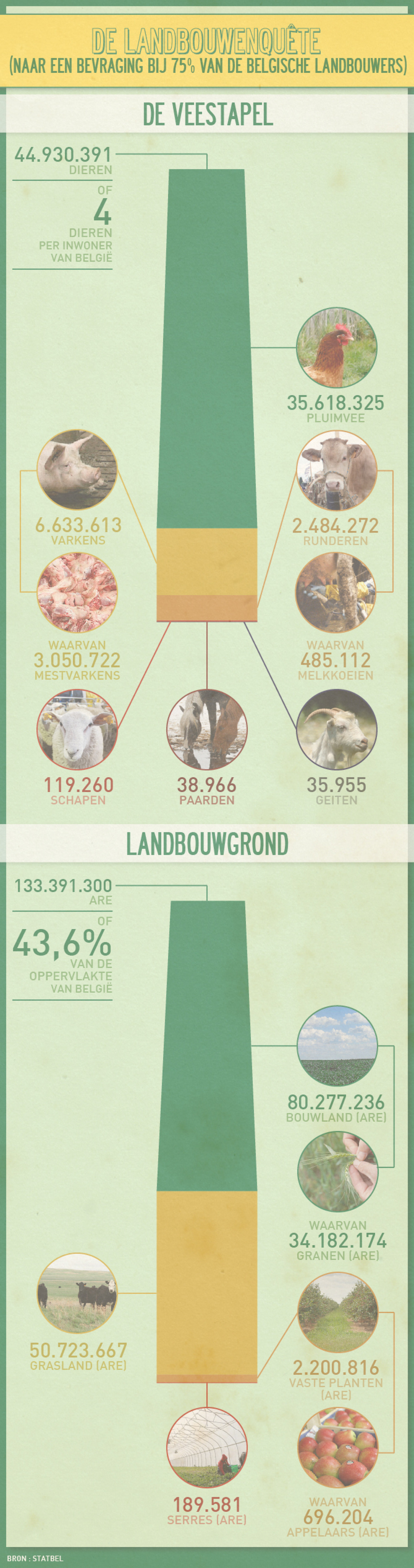 The agriculture enquiry Infographic