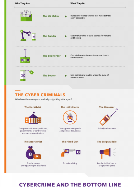 The Anatomy of a DDoS Attack Infographic