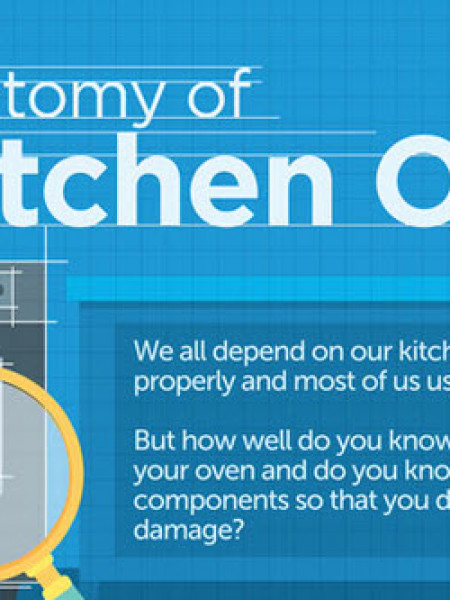 The Anatomy of A Kitchen Oven Infographic