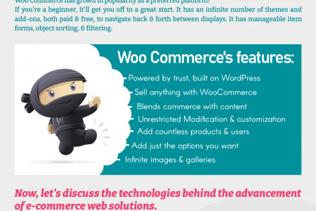 The Anatomy of Building an E-Commerce Website Infographic