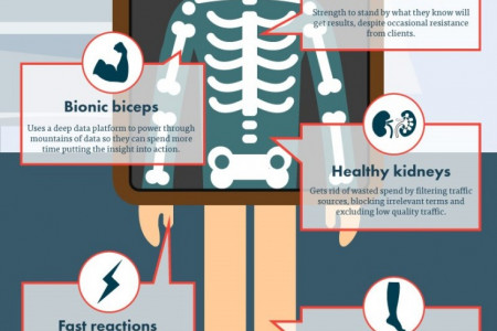 The anatomy of the perfect search marketer Infographic
